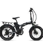 Da Electra Roma e-bike Armony ASSO Fat Plus